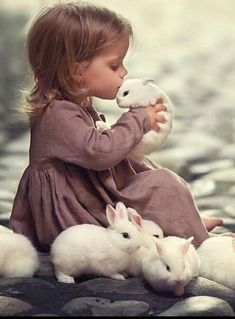 children & animals – Haustier Notfallkarte – Hunde: DIY, Erziehung, Hunde Keks Rezept – Katzen: Bilder, DIY – Join in the world of pin Cute Little Animals, Cute Funny Animals, Cute Baby Bunnies, Cute Babies, White Bunnies, Panda Facts, Tier Fotos, Cute Animal Pictures, Girl Pictures