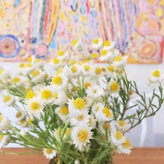 """""""Bright fried egg daisies on a grey Saturday """""""