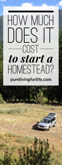 Follow along this young couple's journey of starting a homestead 100% from scratch, including monthly expense reports. Great resource if you're looking to start your own homestead one day. #homestead #homesteading #offthegrid #offgrid
