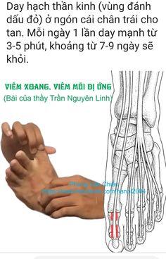 Massage For Headache, Reflexology, Chakras, Health Fitness, Knowledge, Medical, Workout, Education, Random