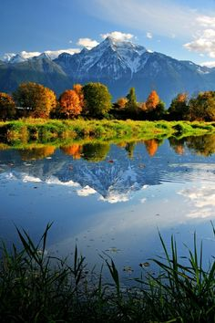 Mount Cheam reflected in a small pond on Seabird Island near Agassiz, British Columbia, Canada Fraser Valley, Sky Sea, Small Ponds, Exotic Places, Sea Birds, Beautiful Places In The World, Hot Springs, British Columbia, Beautiful Landscapes