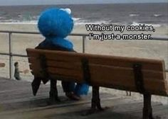 Me too Cookie Monster - Album on Imgur