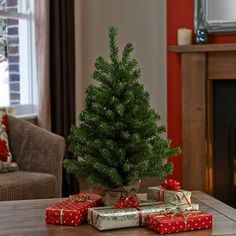 2ft Slim Park Lane Tree Green with Sack at The Range - or a plain one would give me choice of decos