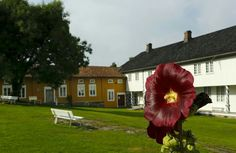 Fossesholm hovedgård, Fossgata 49, 3320 Vestfossen, Norway