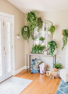 A DIY Living Plant W