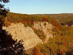 Letchworth State Park NY Gorge Autumn Foliage 18x24 by JWPhoto, $35.00