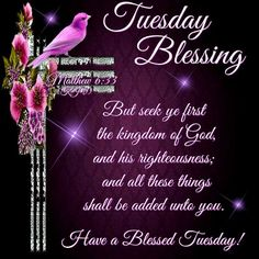 Tuesday blessings god bless good morning tuesday blessings tuesday blessing matthew 633 have a blessed day publicscrutiny Gallery