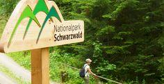 Der Nationalpark Schwarzwald präsentiert sich in Berlin