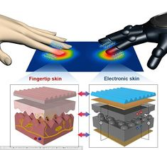 The electronic skin (illustrated) was developed by researchers at the Ulsan National Institute of Science and Technology, led by Professor Jonghwa Park. By adding composites made of a polymer and reduced graphene oxide, the films are able to detect touch and temperature using sensing electric charges