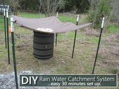 DIY Rain Water Catchment System  - a simple way to collect rainwater... #diy #offgrid #homestead #homesteading