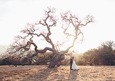 Carmel Valley wedding | photos by Meg Perotti | Planning Sitting in a Tree |100 Layer Cake