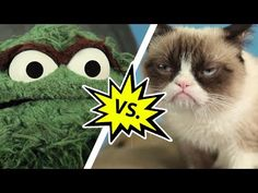 Grouch vs. Grump. Oscar doesn't hold a candle to the most cantankerous cat of them all. #cats #GrumpyCat #MakeACoffeeAndWatchThisNow