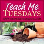 Tuesday Linky - Homemaking Tips