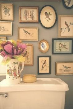 Gallery wall in the bathroom....print out vintage bird pics from the Graphics Fairy