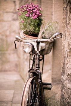pink girly stuff | Pink & other girly stuff / bicycle and flowers = love