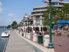 From June to September, local musicians perform free, live music on the plaza at Washington Harbour along the waterfront in Georgetown. Performances are held on Wednesday evenings from 6:30-8:30 p.m. and include a wide variety of bands.