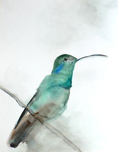 Watercolor Hummingbird Art