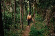 Trilho das Cascatas - Viagens à Solta Places In Portugal, Visit Portugal, Beautiful Places, Wanderlust, Plants, Travel, Waterfalls, Drop, Railings
