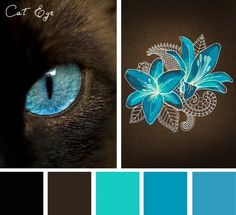 Take your color cues from our feline friends with this gorgeous Cat Eye color inspiration.