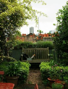 Marianna-Kennedy-roof-garden-view-of-Spitalfields-chimney-pots