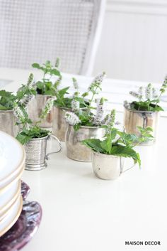 Diminutive silver baby cups filled with flowering mint from the garden mix with new serving pieces from HomeGoods. Combine the new with the old for more interesting results. Sponsored pin