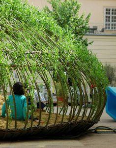 Natural sandpit - 1001 Gardens-wilgentakken in de grond stoppen zodat ze wortelen. Daarna bij bloei naar elkaar toe trekken.