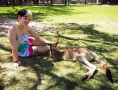 #rlppinkyaus #happy #travels #goodtimes #currumbin #currumbinwildlifesanctuary #wildlifesanctuary #kangaroo by rlppinky16 http://ift.tt/1X9mXhV