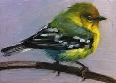 Tiny Pine Warbler Little Bird Painting Open Edition by FinchArts, $20.00