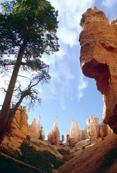 Bryce Canyon National Park, Utah, one of the most beautiful places I've been to!