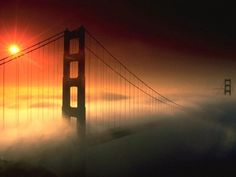 I will see the golden gate bridge.
