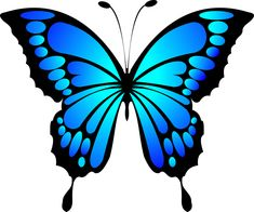 Kelebek, Mavi, Böcek, Yaz, Kanatlar Best Picture For tattoo quotes thigh For Your Taste You are look Butterfly Outline, Butterfly Drawing, Butterfly Template, Butterfly Painting, Butterfly Wallpaper, Butterfly Design, Butterfly Wings, Butterfly Colors, Blue Butterfly Tattoo