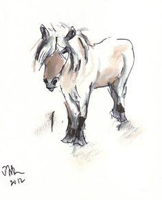 May the Fjord Pony