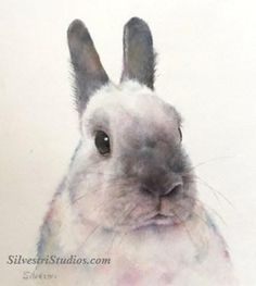 """Rabbit Portrait"", watercolor bunny rabbit painting by animal artist Teresa Silvestri.  Original sold, but prints & cards available."