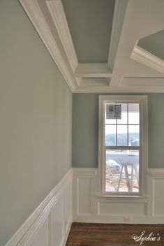 I love this paint color for our bedroom... so soothing! Sherwin Williams -- Silver Mist