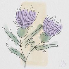 """Iris Stam on Instagram: """"Thistles. .  #makingarteveryday #mae2020 #makingarteveryday2020 #drawingdaily #draweveryday #drawingeverydaychallenge #365daysofdrawing…"""" Thistles, Iris, Watercolor Paintings, Natural, Drawings, Creative, Instagram, Watercolor Drawing, Watercolors"""