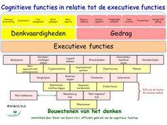 Cognitieve functies en executieve functiesEmiel van Doorn StiBCO