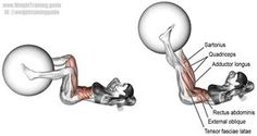 Stability ball leg extension crunch. A rarely seen combination of an isolation pull exercise (the crunch) and an isolation push exercise (the leg extension). Main muscles worked: Quadriceps, Rectus Abdominis, Internal Oblique, External Oblique, Tensor Fasciae Latae, Iliopsoas, Pectineus, Sartorius, Adductor Longus, and Adductor Brevis.
