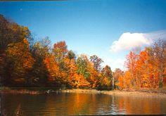 Alum Creek State Par