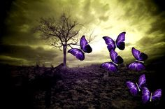 image by Vania. Find more awesome purple images on PicsArt. Kahlil Gibran, Wreath Drawing, Broken Wings, Purple Love, Purple Butterfly, Fb Covers, Dark Places, Violet, Embedded Image Permalink
