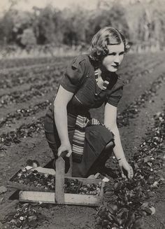 I have to say that the ensemble that the young woman is wearing isn't really practical for farming, but I love the example of everyday fashion. Also loved it because farming and gardening was very important to Greenbelt, especially during the war years.