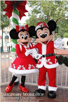 Christmas Mickey and Minnie! Mickey And Minnie Love, Mickey Mouse Christmas, Mickey Minnie Mouse, Disney Christmas, Disney Mickey, Disney Parks, Walt Disney, Disney Holidays, Disney Couples