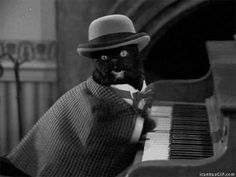 Keyboard cat, the early years…Salem from Sabrina!!!!! ^_^