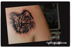 Wild Cat Cub Tattoo from Poland: Collector unknown Tattoo artist: Paul Siwochowicz aka Animal at Lasica i Lustro, Zielona Gora, Poland