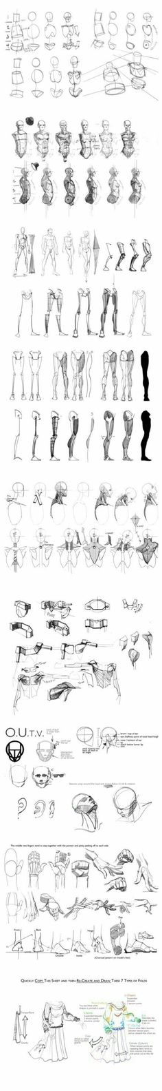 Anatomy Drawing Tutorial Guide Reference How To Draw Anime Master Anime Ecchi Picture Wallpapers… Anatomy Sketches, Anatomy Drawing, Anatomy Art, Drawing Sketches, Art Drawings, Human Anatomy, Sketching, Zbrush Anatomy, Body Sketches
