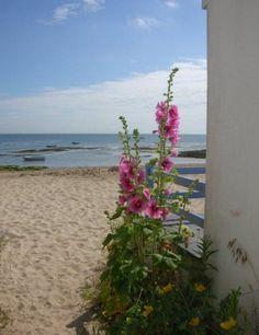 Ile de Noirmoutier, plage de vendée, à quelques kilomètres du camping l'Evasion  : www.camping-levasion.fr