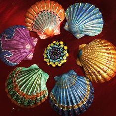 Trying out some painted shells ? Trying out some painted shells ? Seashell Painting, Seashell Art, Seashell Crafts, Pebble Painting, Pebble Art, Stone Painting, Sea Crafts, Rock Crafts, Crafts To Sell