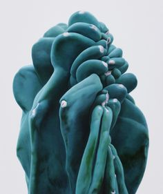 Cacti - Lee Kwang-Ho - http://www.kukje.org/KJ_artists_view_1.php?a_no=186&v=1