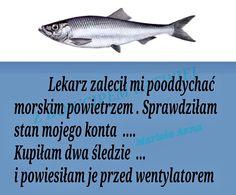 Weekend Humor, Funny, Haha, Polish Sayings, Funny Parenting, Hilarious, Fun, Humor