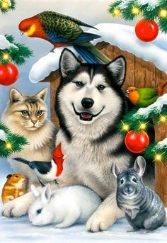 PETS AT CHRISTMAS by Illustrator Howard Robinson