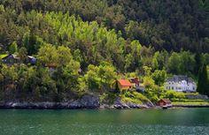 nature, scenic, landscape, green, village, forest, lake, tree, spring wallpaper